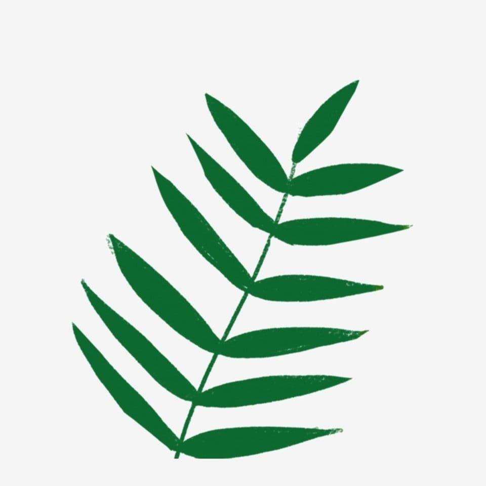 Hand Drawn Cartoon Leaf Element Leaves Big Green Leaves Nature Png Transparent Clipart Image And Psd File For Free Download Cartoon Leaf Leaf Illustration Plant Cartoon