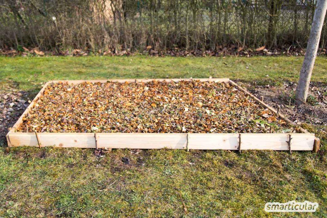 Beet Statt Rasen So Wird Der Rasen Zum Gemusebeet Ohne Umgraben Gemuse Beet Anlegen Gemusegarten Anlegen Gemusebeet