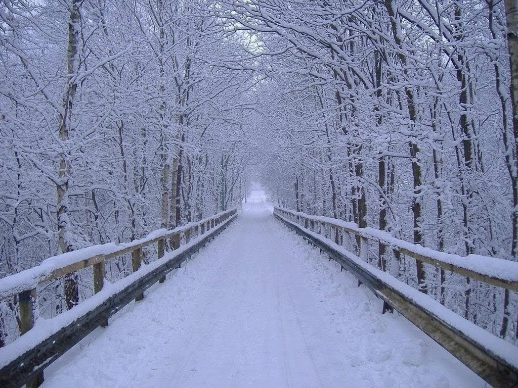 Image result for image of beautiful winter scene