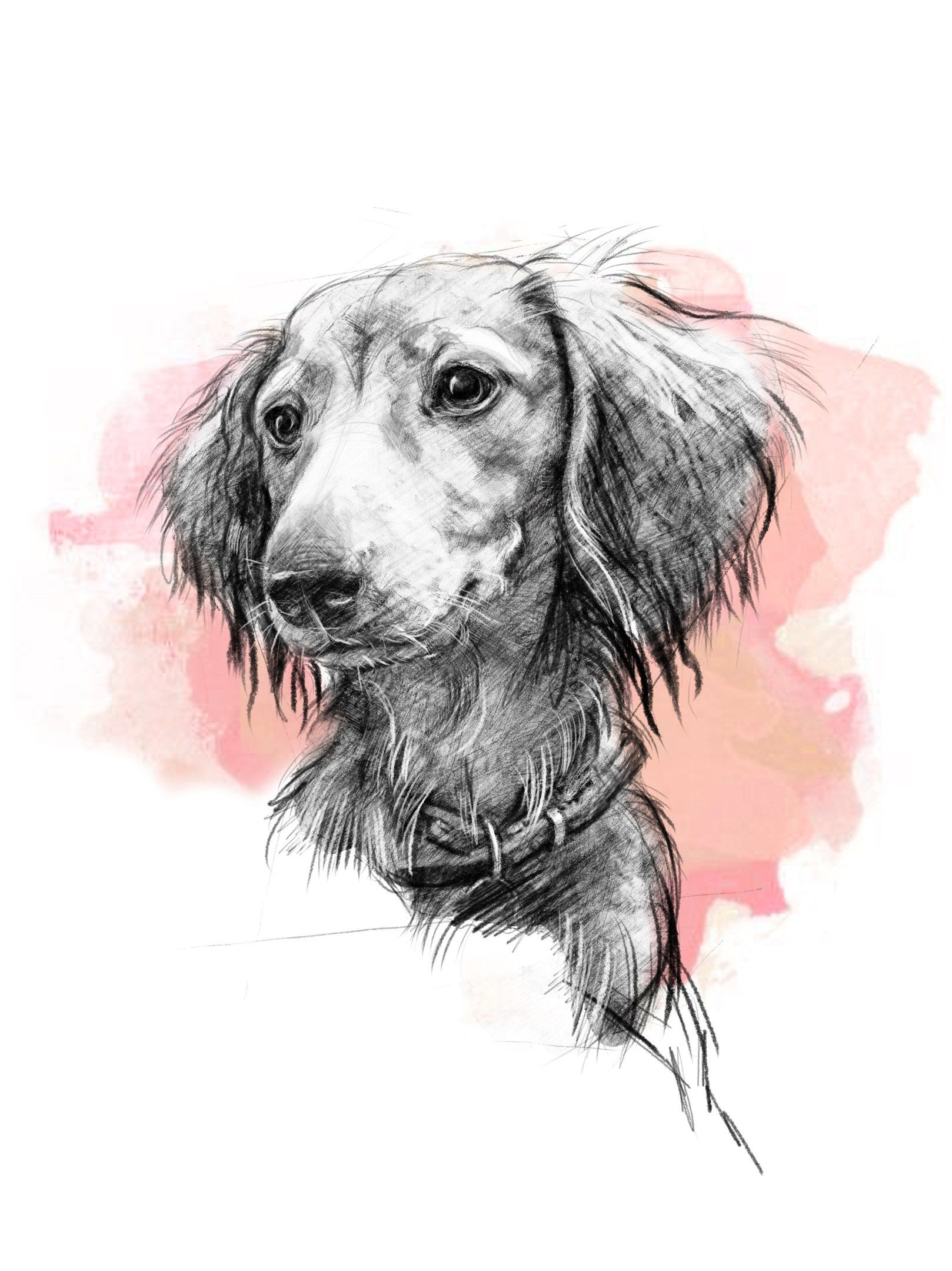 Custom Pet Portrait Pencil Dog Drawing Digital Animal Etsy In 2020 Pet Portraits Dog Print Art Dachshund Drawing