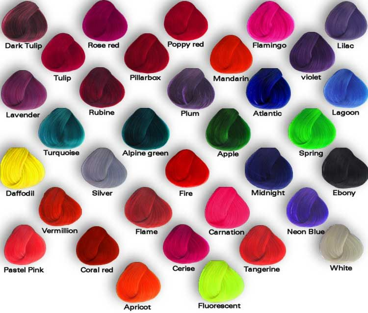 Punky Color Shade Palette Thinking Of Doing Violet This Summer Directions Hair Dye Hair Color Swatches Hair Dye Brands