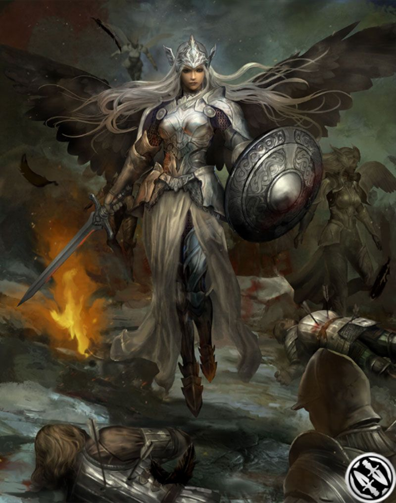 Valkyrie From Mobius Final Fantasy Final Fantasy Art