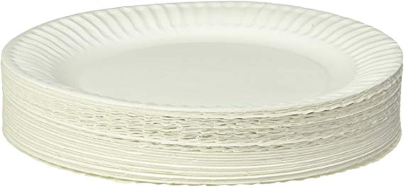 Amazon Com Empress Uncoated Paper Plate 9 Inches White Pack Of 100 1004997 Amazon Warehouse Paper Plates Cow Craft Paper Plate Crafts