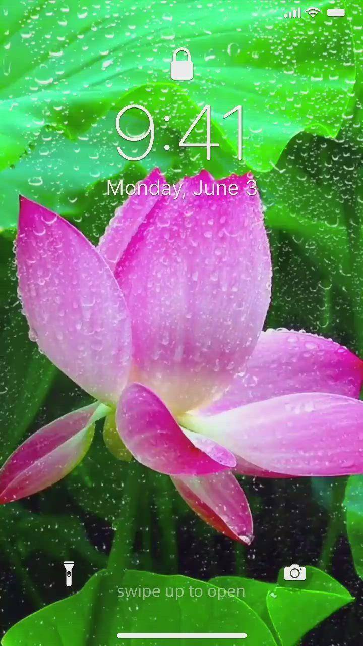 Photo of 21+ Wallpaper Iphone, Korean Wallpaper, Wallpaper Backgrounds