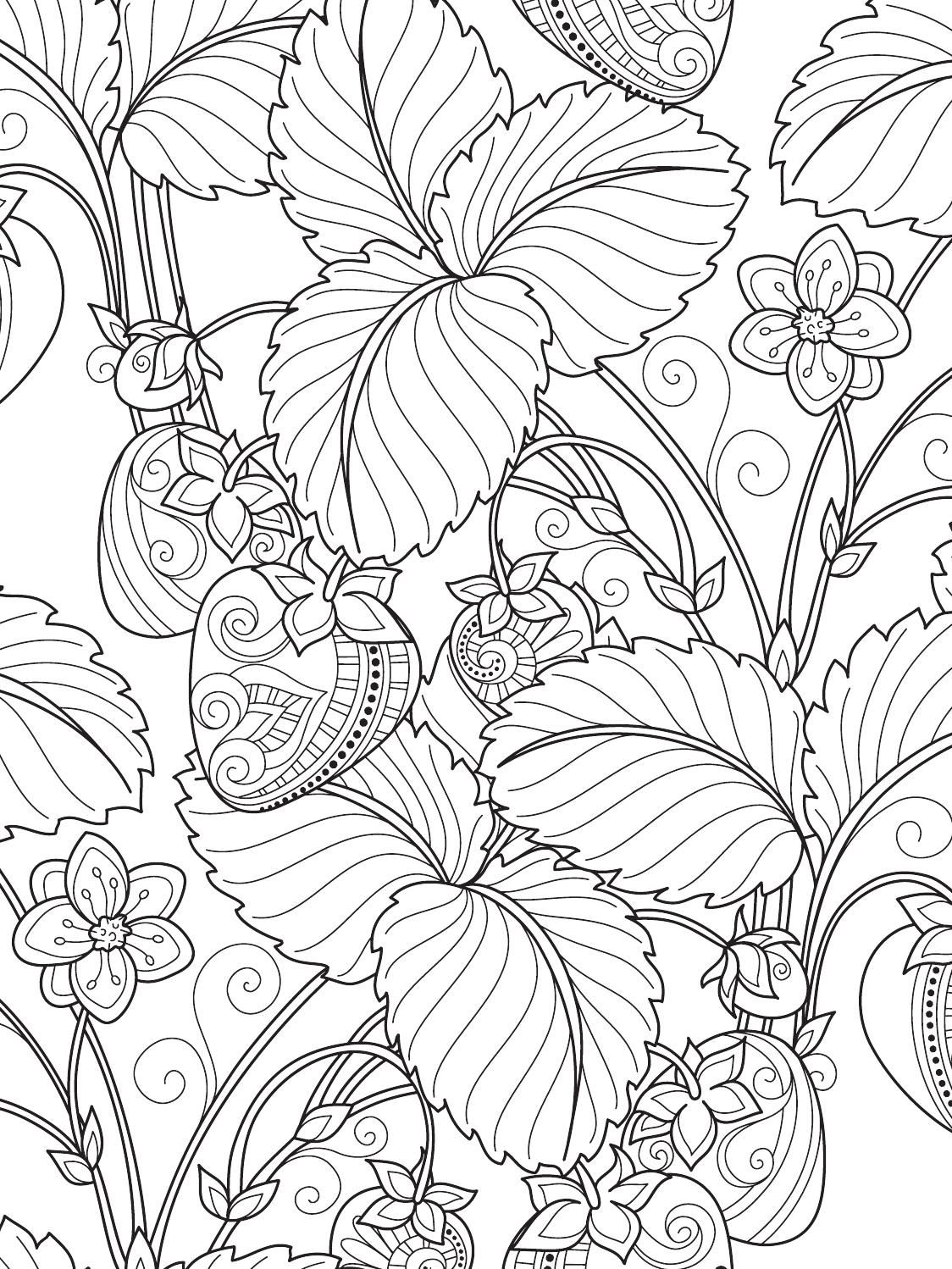 Terapia Da Cor Nº3 Coloring Books Pattern Coloring Pages