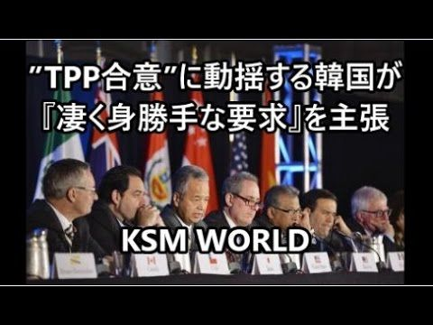 【KSM】TPP合意に動揺する韓国が『凄く身勝手な要求』を主張し始めた模様。国際社会から置いてけぼりにされた