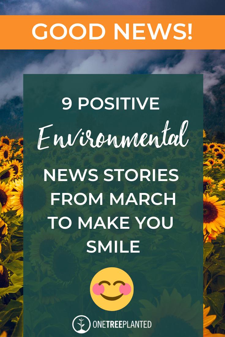 Good News 9 Positive Environmental News Stories Environmental News Save Mother Earth Good News