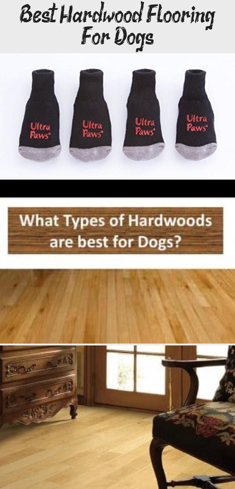 Best Hardwood Flooring For Dogs Flooring, Refinishing