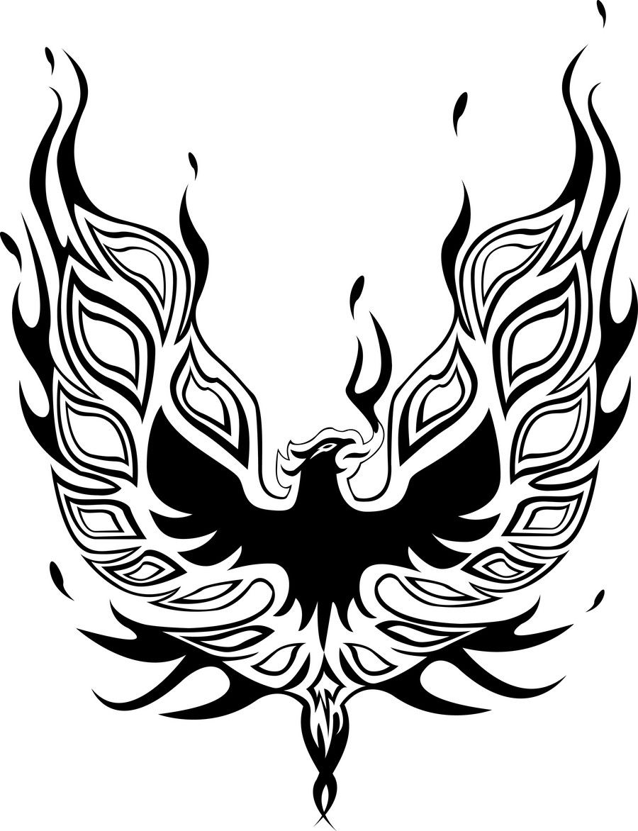 Entry 21 By Oragamiartwork For Graphic Design For 1979 Pontiac 1979 Pontiac Trans Am Phoenix Tattoo Design Trans Am