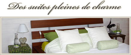 Des Suites Pleines De Charme Decoration Maison Chambre Avec Spa Privatif Spa Privatif