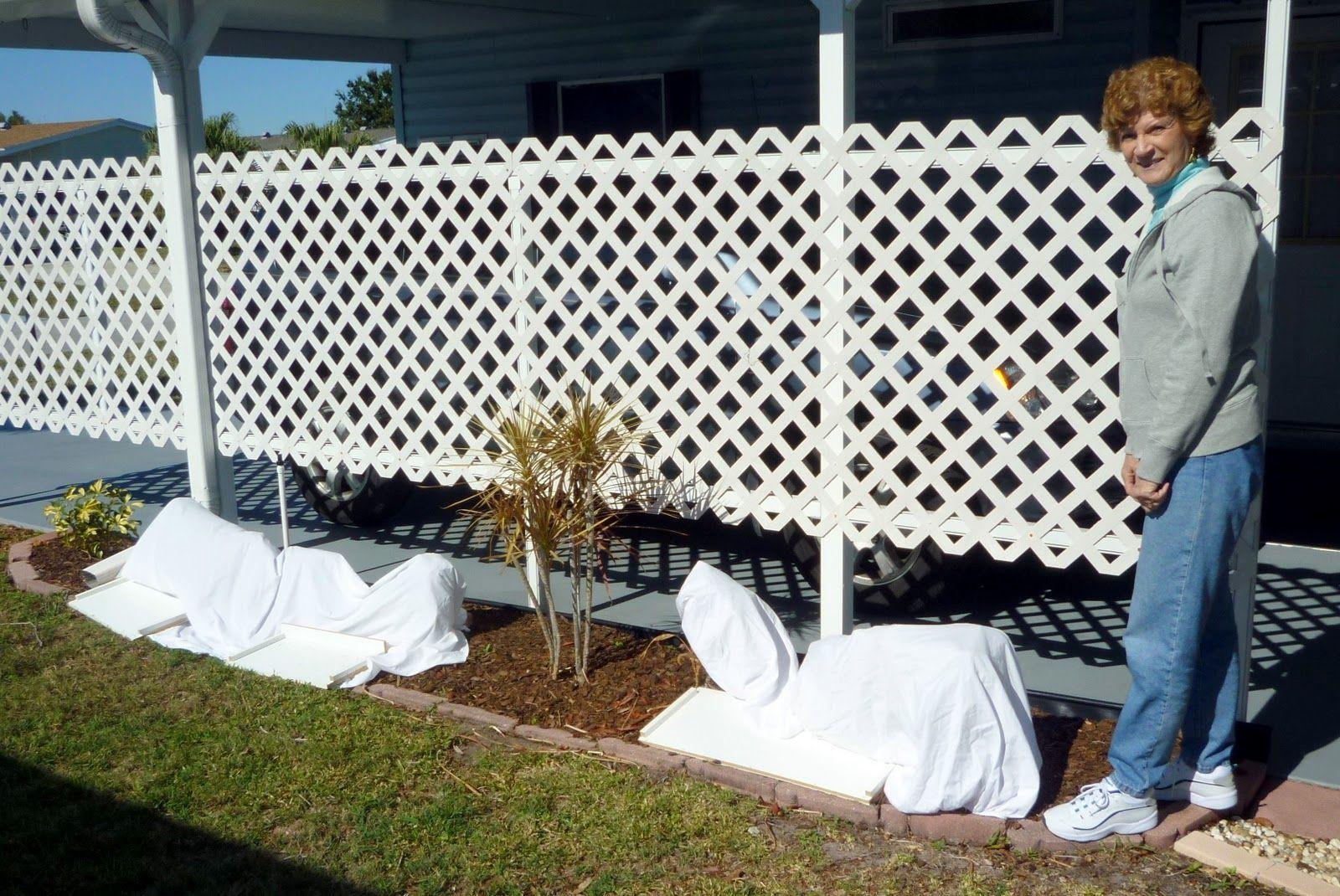 Lattice fence carport wall to hide neighbors carport a for Carport fence ideas
