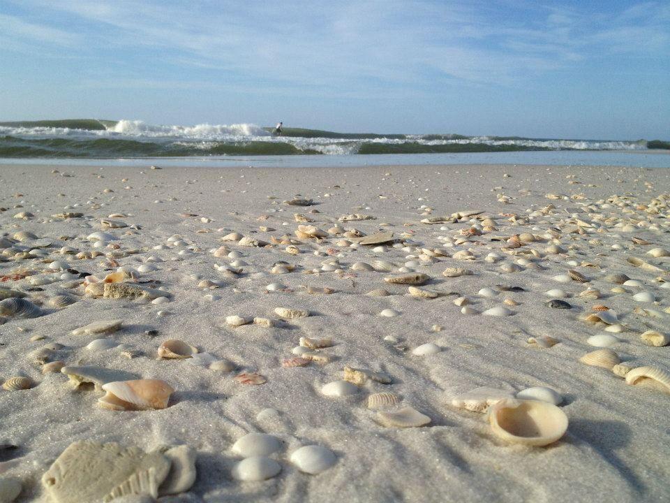Pensacola Beach Shell Perspective
