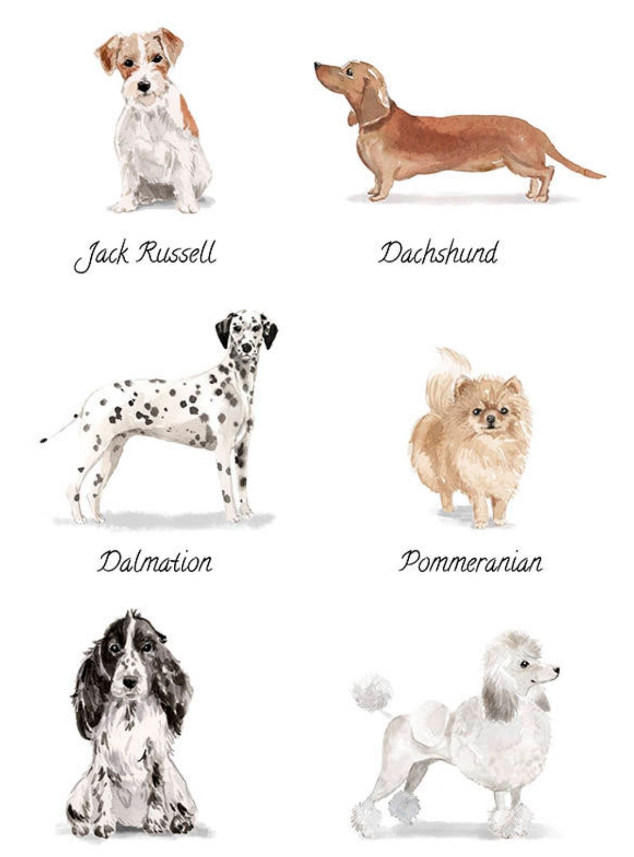 Pin by Dog Portraits on Watercolor Dog Art Light