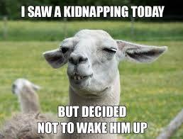 Image Result For Funny Llama Memes Funny Llama Pictures Llama Jokes Cute Puns