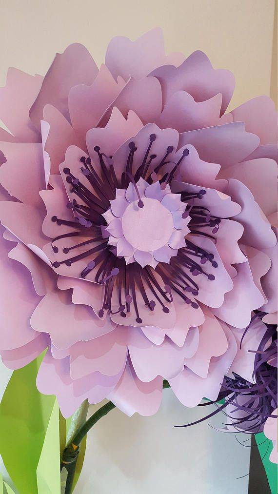 Paper Flower Template And Base Svg Digital File 58 Paper Flowers