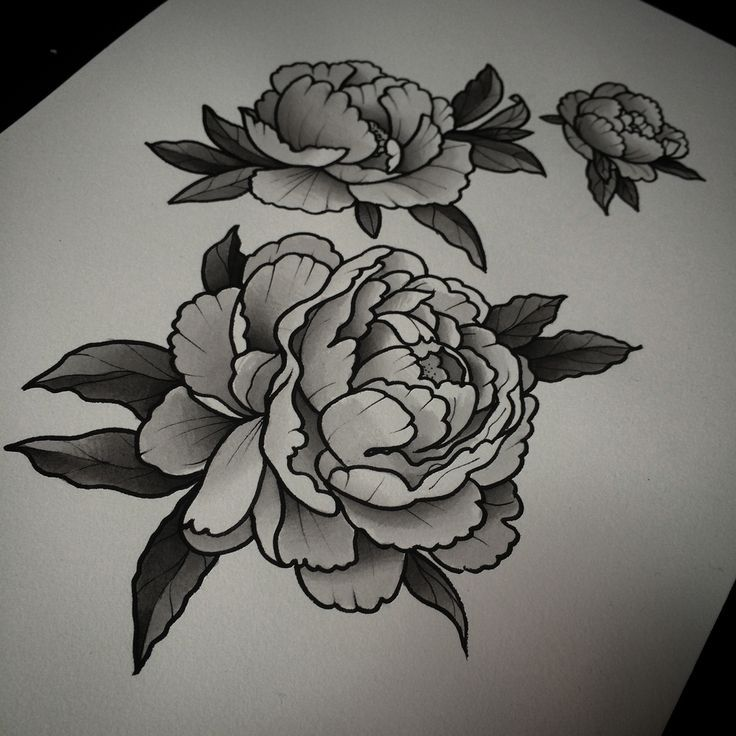 Black Ink Peony Flowers Tattoo Design White Flower Tattoos Peonies Tattoo Black And White Flower Tattoo
