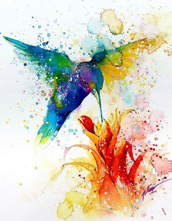Hummingbird At Red Flower Watercolor Splash Painting Tattoo Art