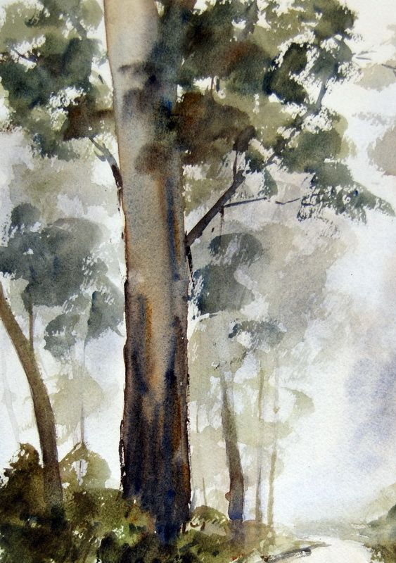 Painting Gum Tree In Foreground Eucalyptus In Watercolor