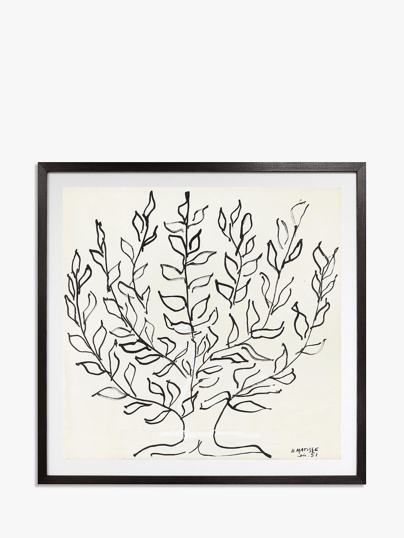 Matisse the plain tree 1951 framed print mount 102 x