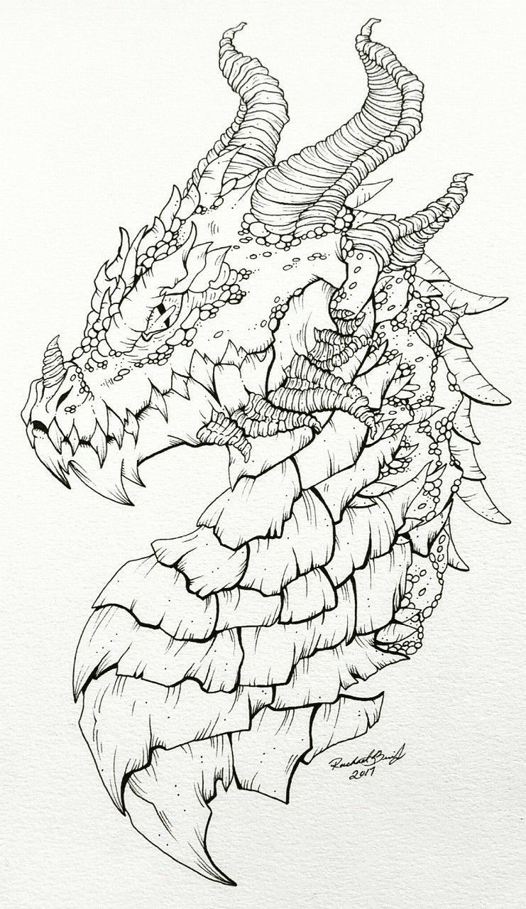 Dragons Head Dragon Sketch Dragon Drawing Pencil Drawings