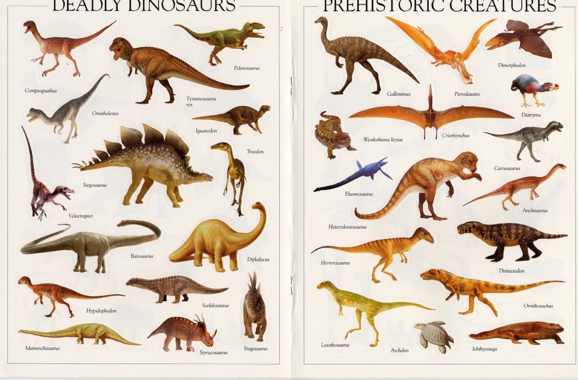 Of pictures list with dinosaurs