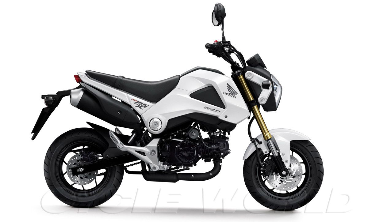 2014 Honda Grom 125 Cc Its Like A Mix Between Dirt Bike And Super Out Came  Mini Street
