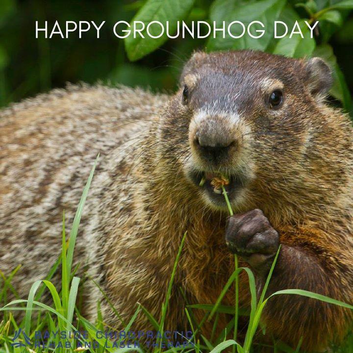 Today is Groundhog Day! Happy #GorundhogDay! #BaysideChiro #FairhopeAL