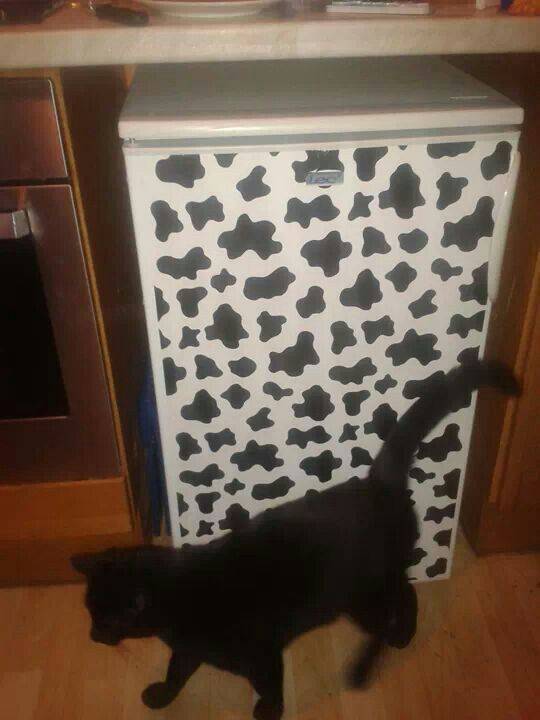 Cow Print Fablon Fridge This Moo Cow Print Can Be Found