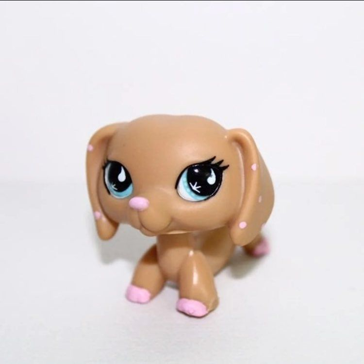 Lps 909 In Perfect Condition 100 Authentic No Flaws Open To Reasonable Offers Can Bundle With Other Lps I Have Listed Lps Dog Lps Collies Lps