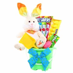 Buy alder creek gifts bunny easter pail with free shipping on buy alder creek gifts bunny easter pail with free shipping on orders over 35 low negle Image collections