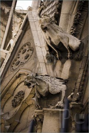 Gargolas de la Catedral de Notre-Dame. Funcionan para adornar los desagües de los techos de la catedral y para alejar a los espíritus malvados de acercarse a ella
