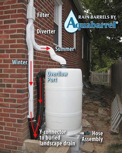 Rain Barrel: How To Make And Use Rain Barrels - PlantCareToday.com