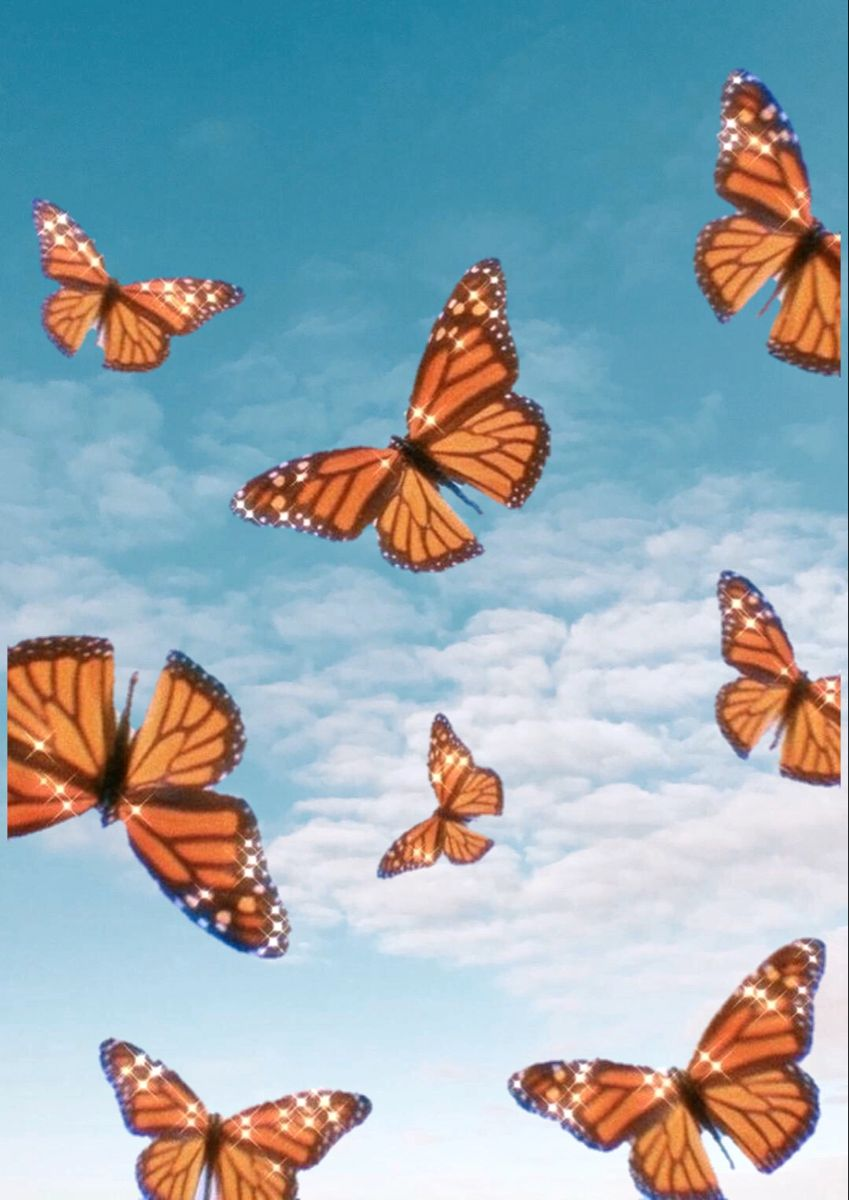 Aesthetic Butterfly Wallpaper Laptop : aesthetic, butterfly, wallpaper, laptop, Butterfly, Wallpaper, Backgrounds,, Wallpaper,