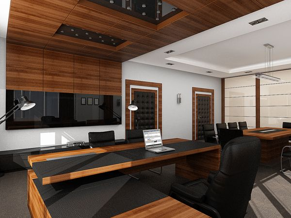Public interior design 02 executive director office on for Zen office design ideas