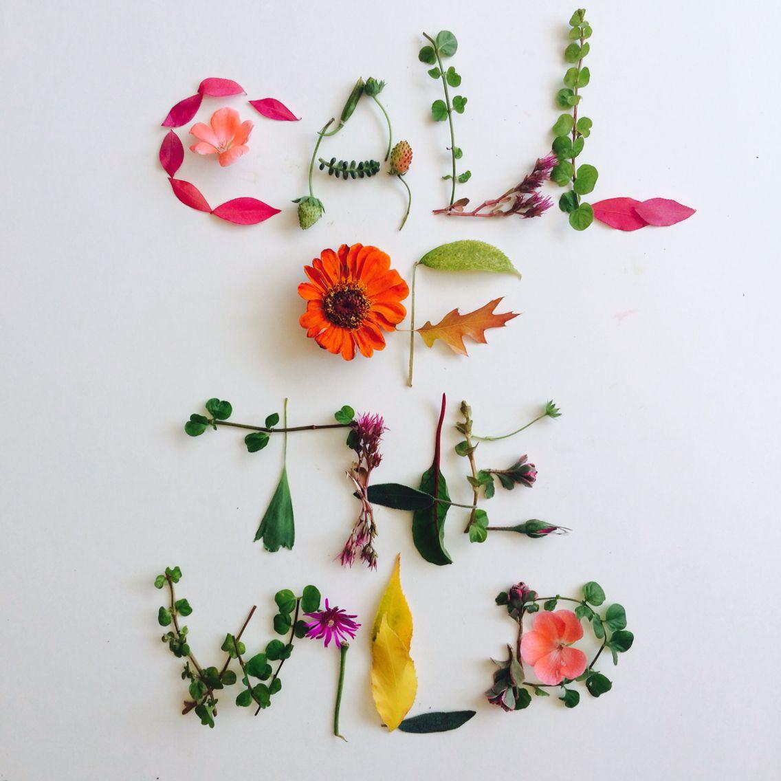 <{CALL OF THE WILD}> #botanicalfont #flowerfont #handmadefont
