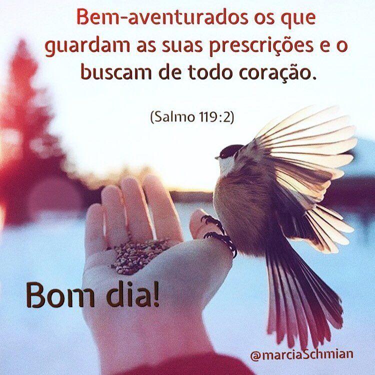 Tag Frases De Bom Dia Amor Com Deus