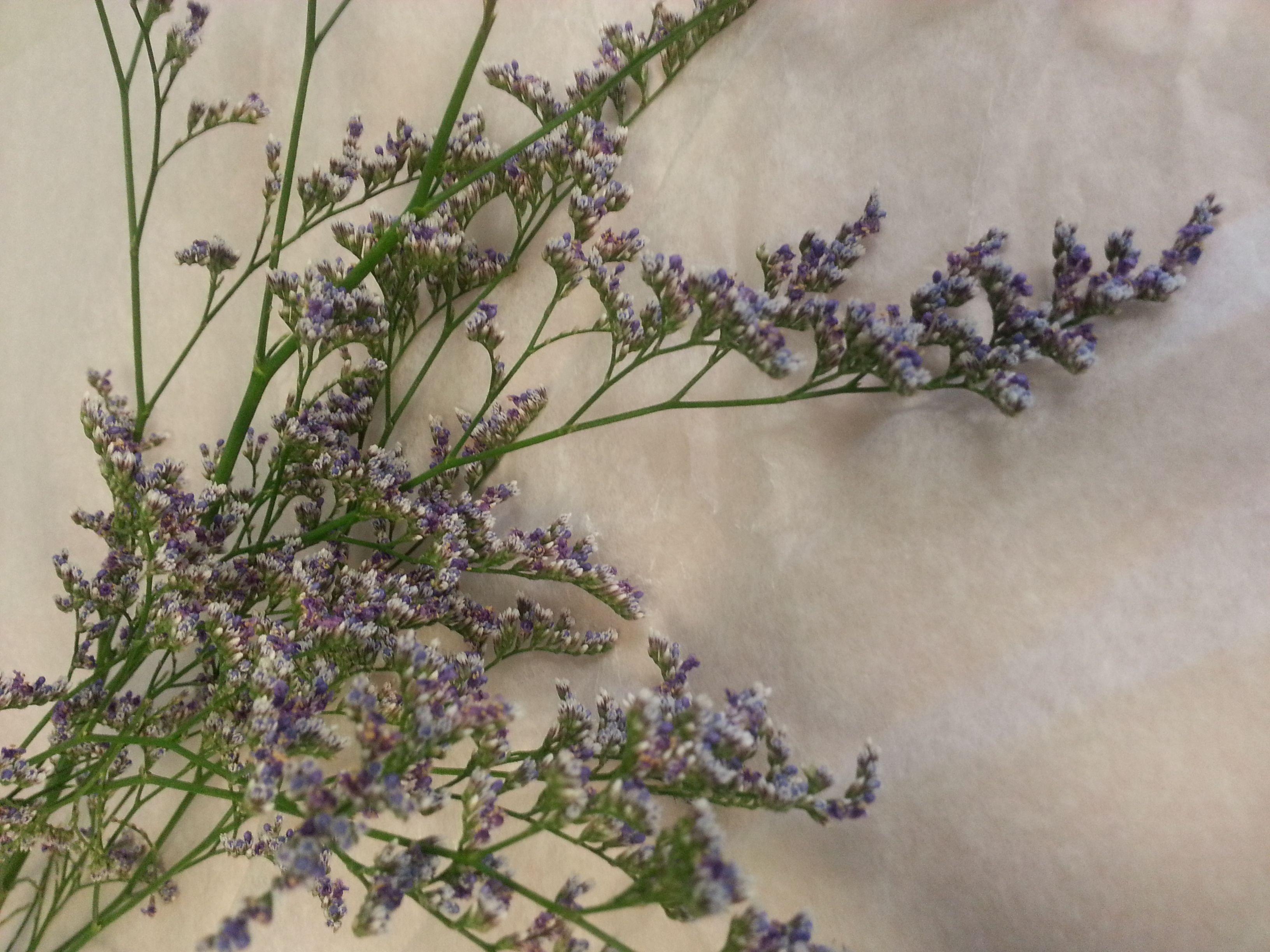 Purple Caspia Flowers Floral Wedding