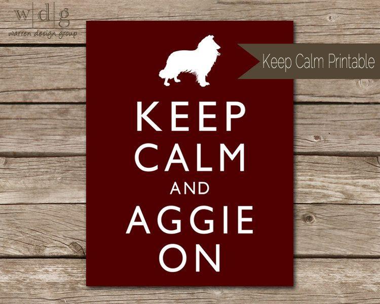 Aggie On University Diy Texa A M Aggies Am Essay Prompts