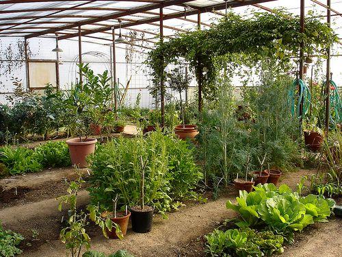 Elegant Enclosed Garden Space