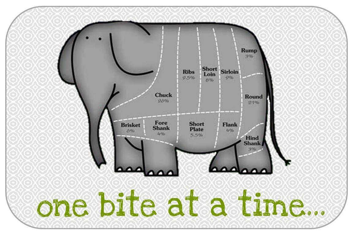 100 Funny Elephant Jokes Elephant Jokes
