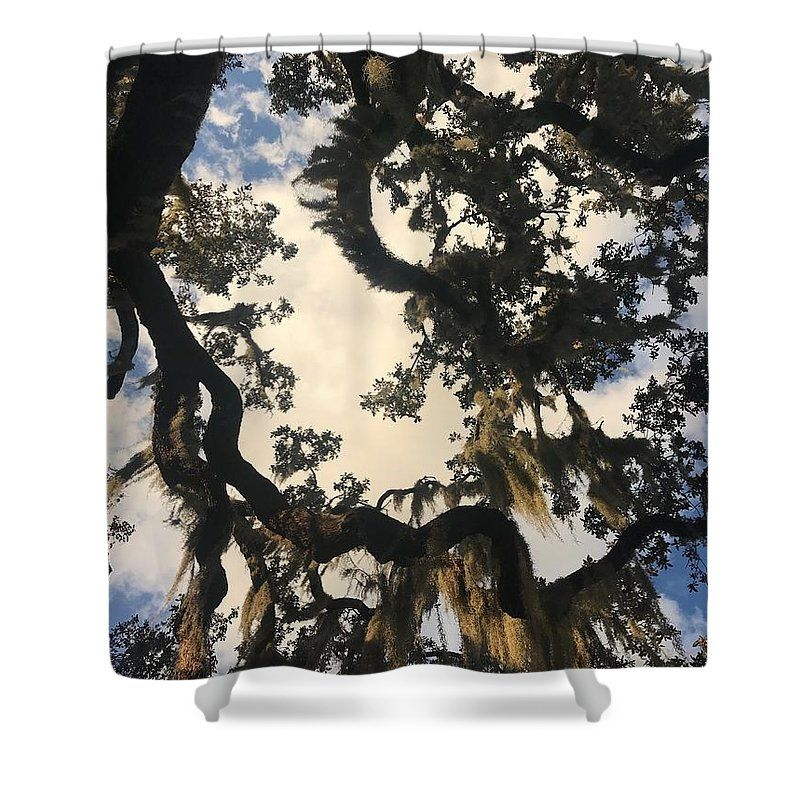 Beautiful Canopy Shower Curtain For Sale By Becky Claffy