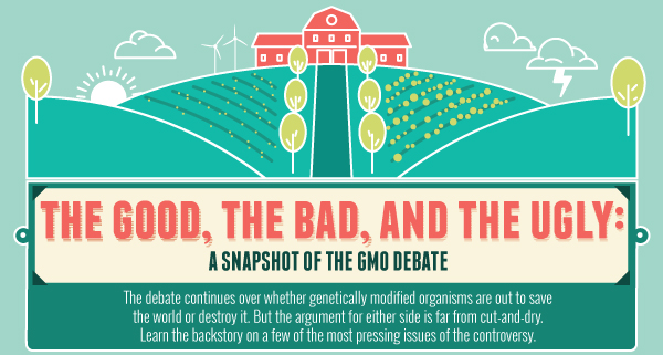 Genetically Modified Food Gmo Pro And Con Fact Foods Essay