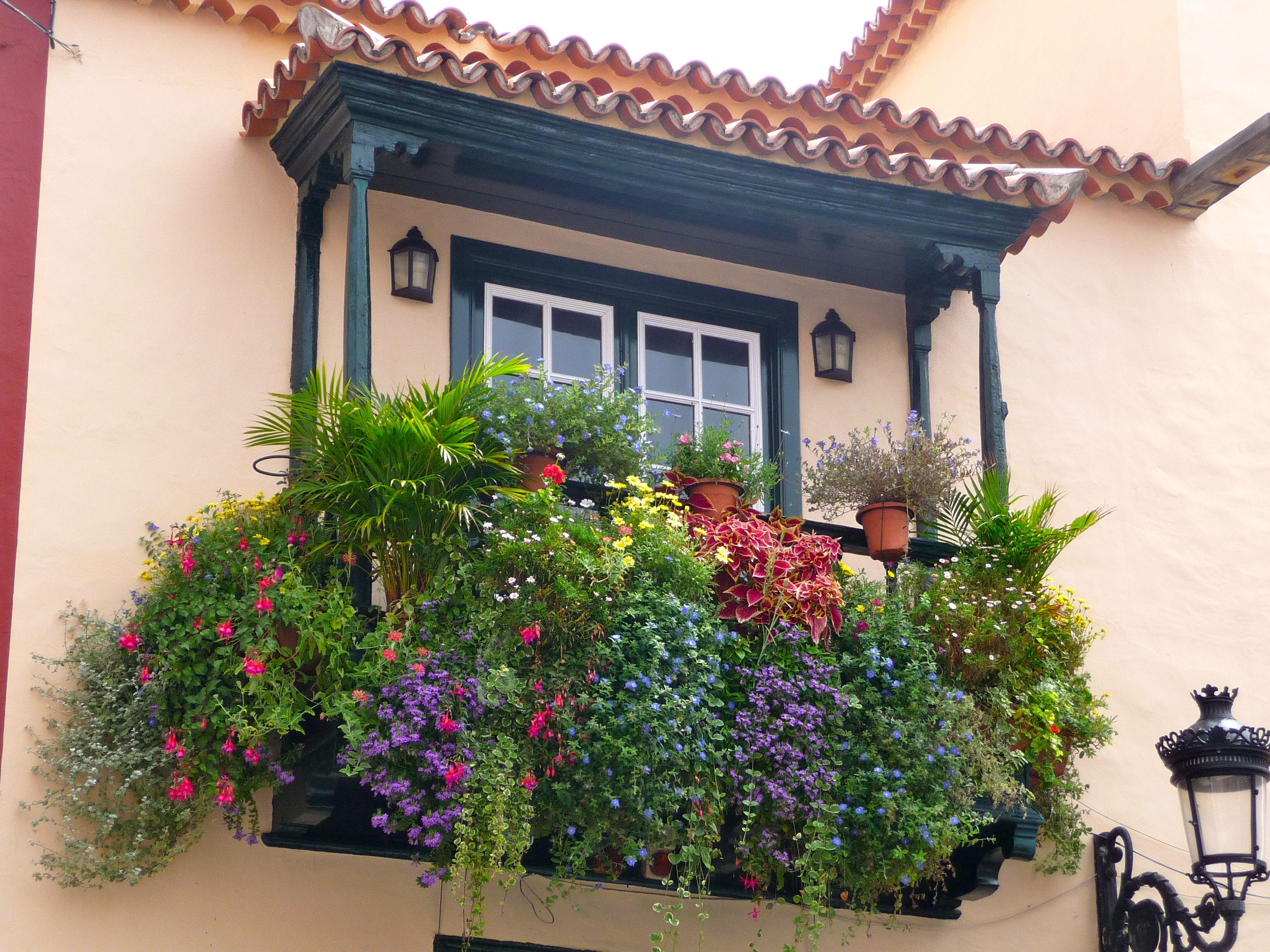 Balcones con flores buscar con google balcones y for Balcones con plantas