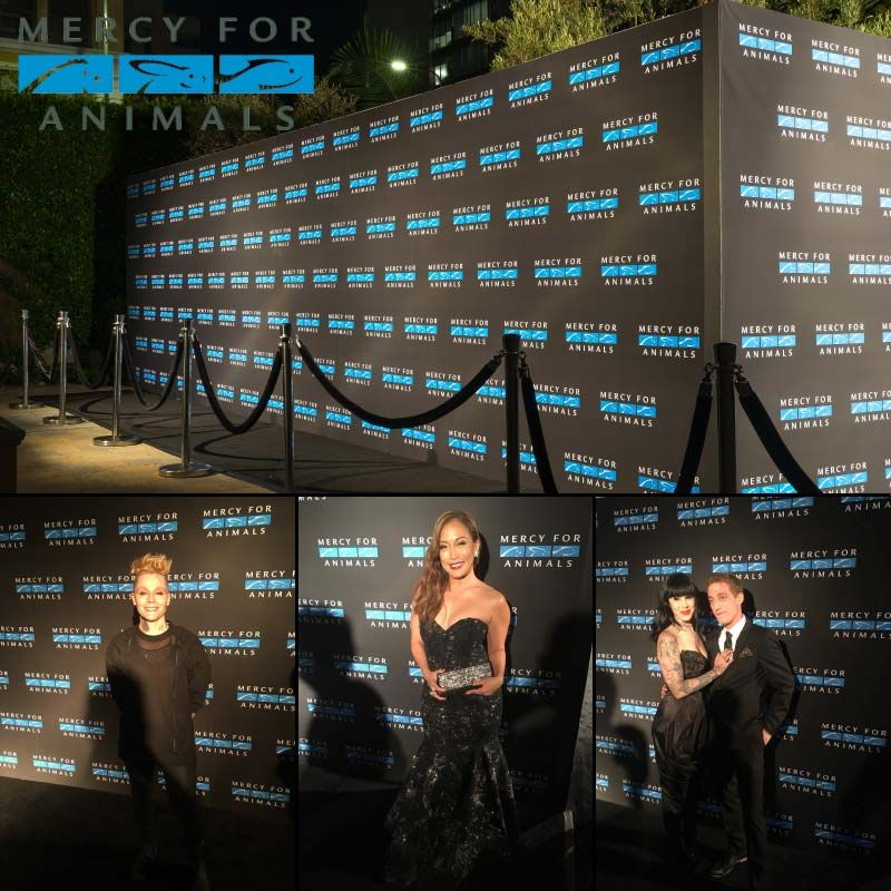 Seamless Professional Media Walls In Los Angeles Media Wall Event Backdrop Corporate Events