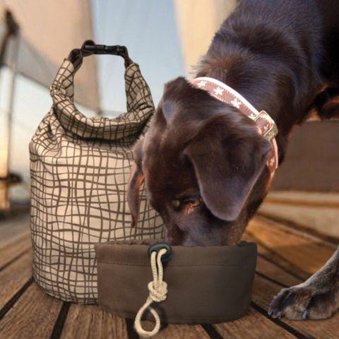 Kibble Carrier Dog Travel Dog Bag Pet Travel