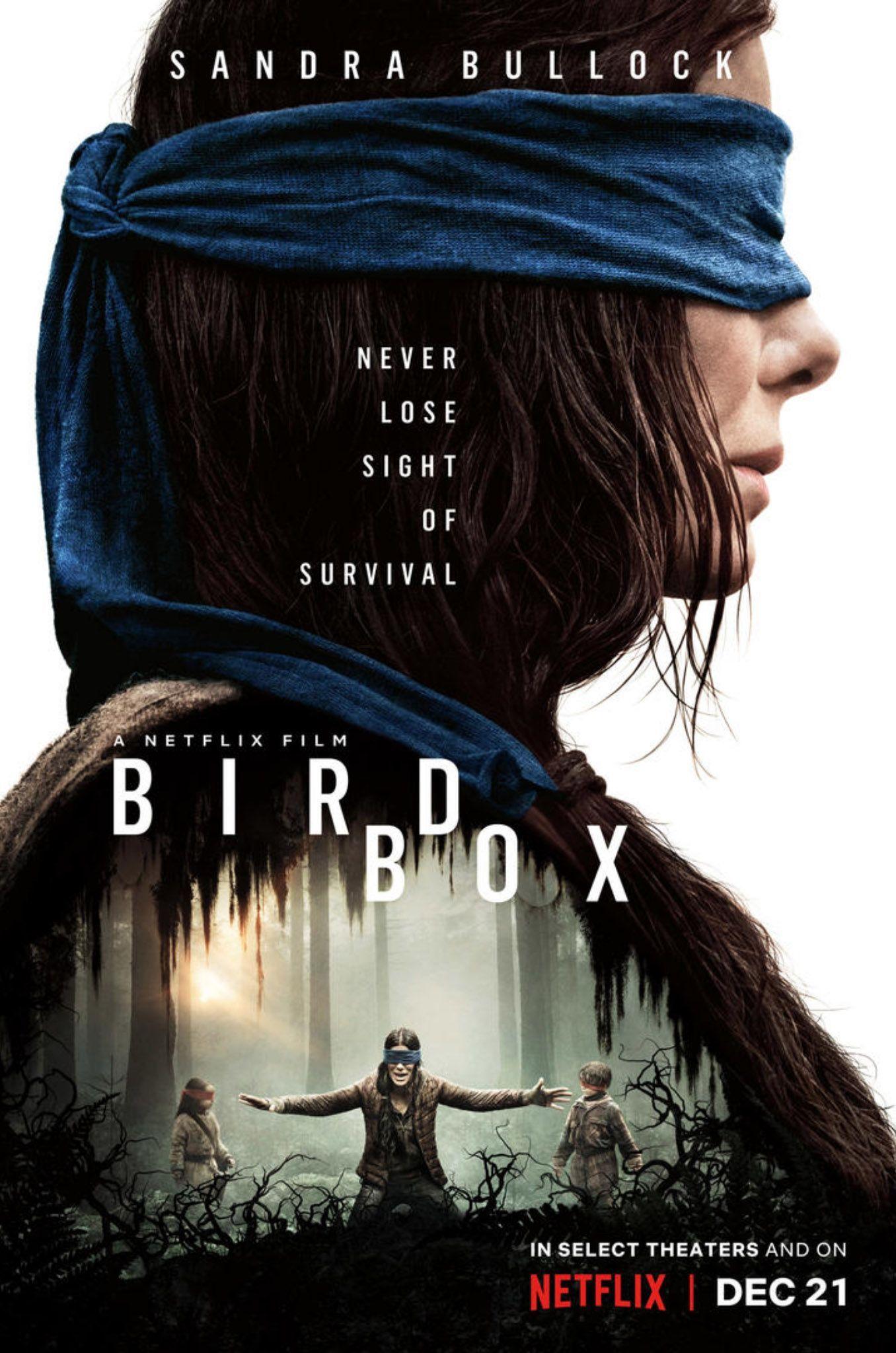 Bird Box Melhores Filmes De Terror Capas De Filmes Filmes
