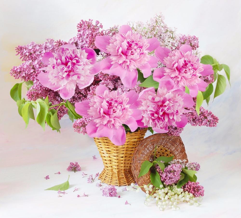 Spring Flowers in Basket Photography Still Life Flower Lilac Basket Pink Flower …