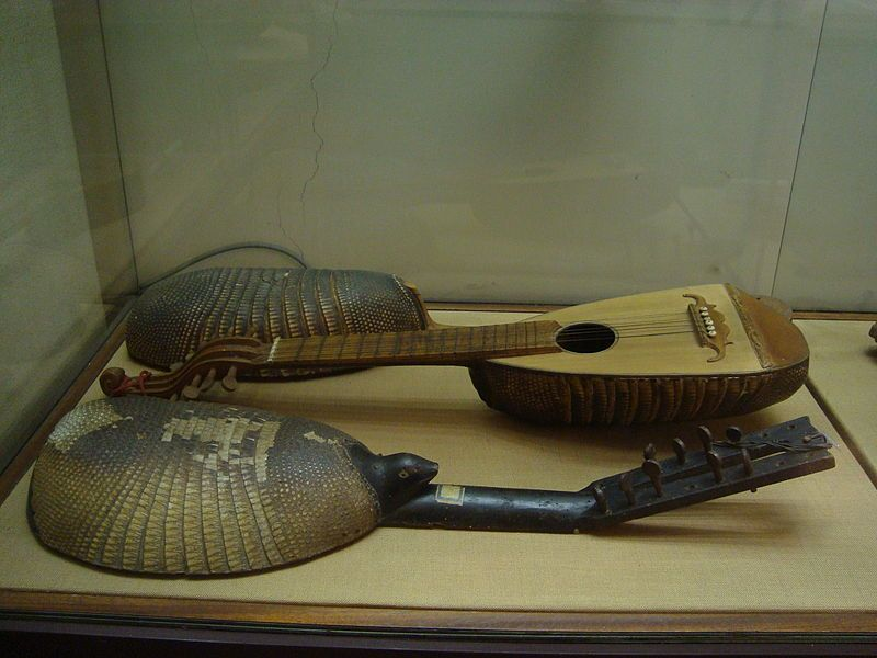 Old Charango, Museo degli Strumenti Musicali in Rome