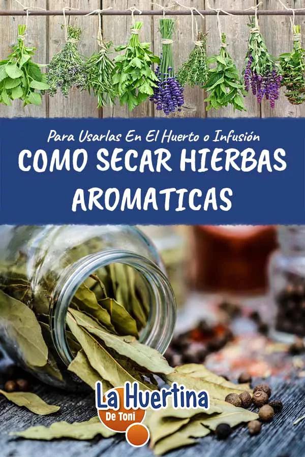 Como Secar Hierbas Aromáticas Y Medicinales Para Almacenar En 2020 Secado De Hierbas Hierbas Plantas Aromaticas Y Medicinales