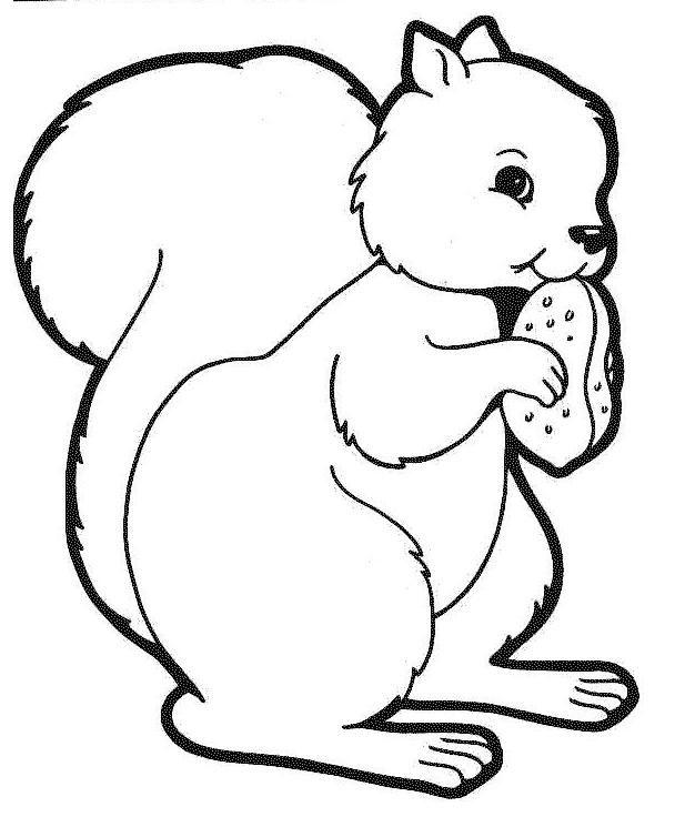 Kleuterdigitaal Kp Eekhoorn 04 çizim Hayvanlar Coloring Pages